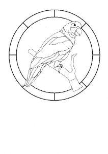 Bird 3.