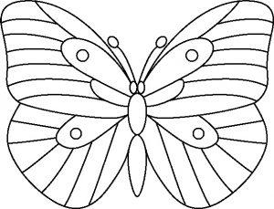 Butterfly 1.