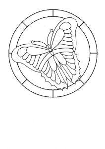 Butterfly 6.